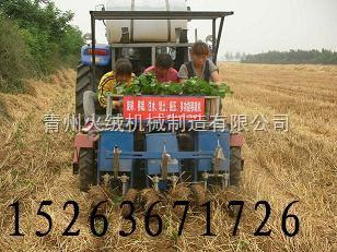 HR移栽机-秧苗移栽机,蔬菜栽苗机中国先进设备*机型