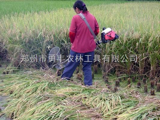 河南新型小麦收割机 多功能小麦收割机厂 勇丰小麦收割机批发