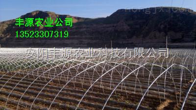 农业温室大棚骨架 钢结构育苗大棚 简易温室大棚 郑州大棚棉被厂