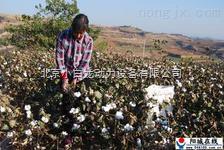新疆棉花收获机 新疆棉花收割机 新疆采棉机多少钱一台