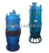 BQW矿用隔爆潜污电泵,供应BQW排污电泵,80BQW60-50-22/N