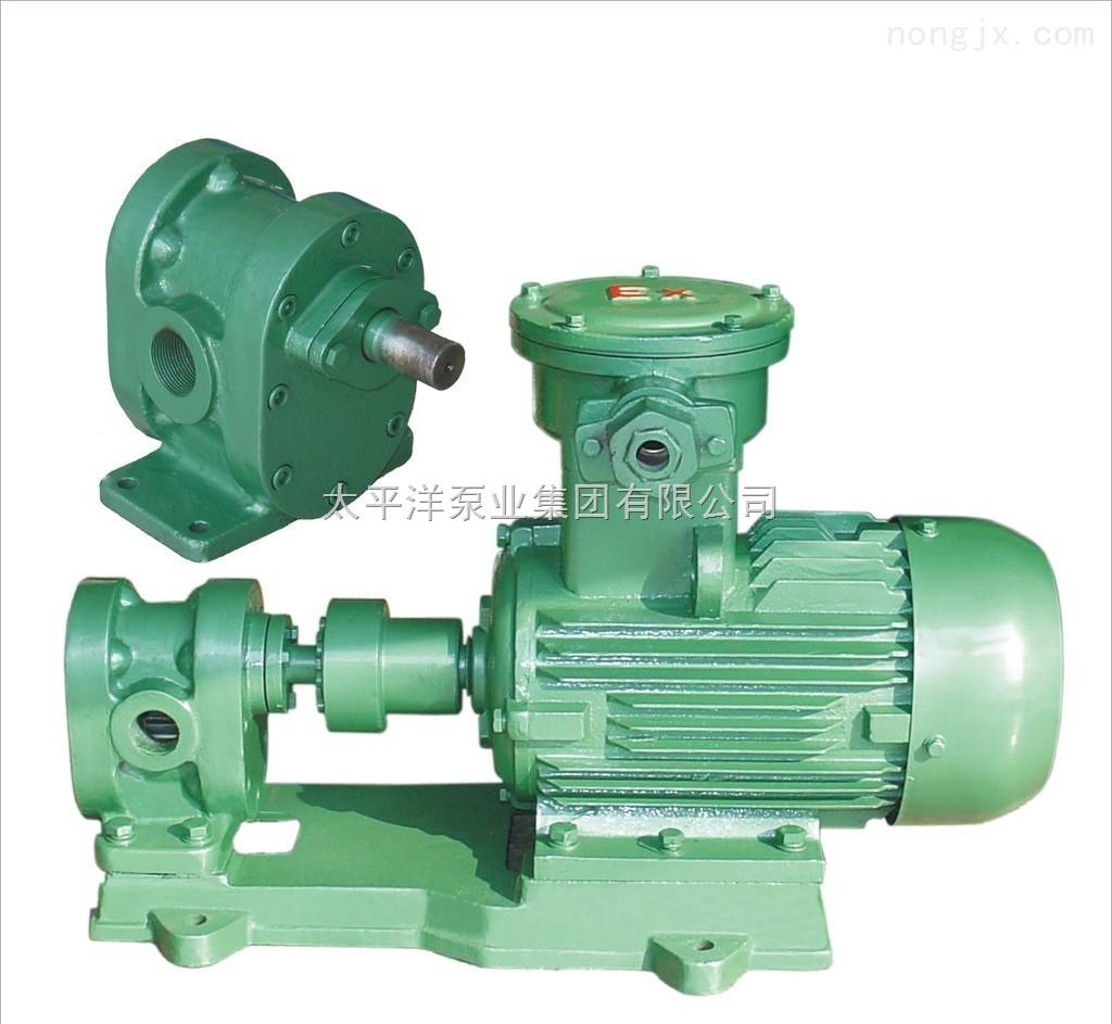 齿轮式输油泵KCB型