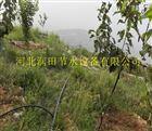 多种小管出流PE管价格 陕西西安周至县猕猴桃滴灌PE管
