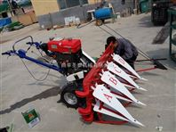 玉米青贮机 青贮玉米秸秆收割机 收芦苇机器
