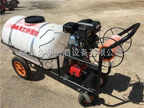 陇南市手推式高压汽油喷雾器 专业汽油打药机 水稻喷药机