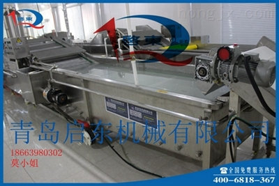 启东QD-985-姜片清洗机