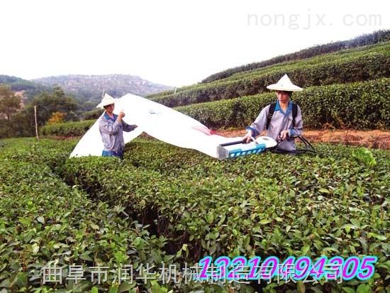 小型采茶机 背负式采茶机 茶叶修剪机