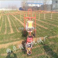 汽油喷雾打药机 自走式三轮喷药机 农用小麦三轮打药机