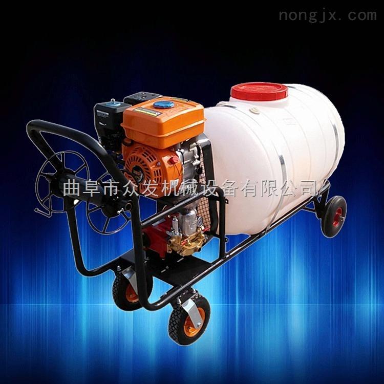 高压大马力手推式喷雾器 果园小型喷药机