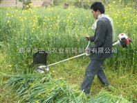 杂草清理机 过功能割草机 园艺割草机