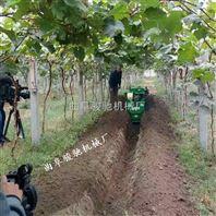 新型田园管理机 大棚果园施肥机 履带式拖拉机
