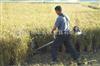 河南新型小麦收割机 多功能小麦收割机厂