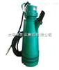 BQS型排沙泵,太平洋排沙泵,40BQS20-100-18.5